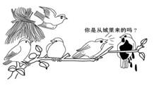 徐州/19.漫画反映的城市问题是